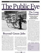 The Public Eye, Fall 2010 cover