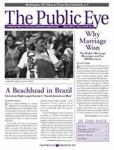 The Public Eye, Winter 2013 cover