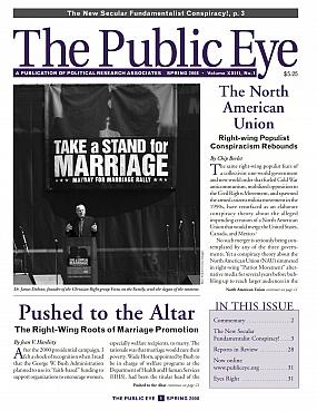 The Public Eye, Spring 2008 cover